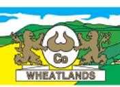 Wheatland Paneer Block 1kg