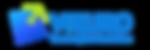 Vizuro Logo New.png