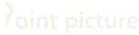 point picture logo