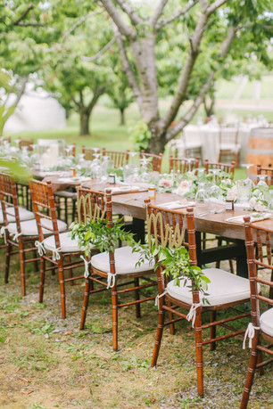 Orchard Wedding Niagara-on-the-Lake