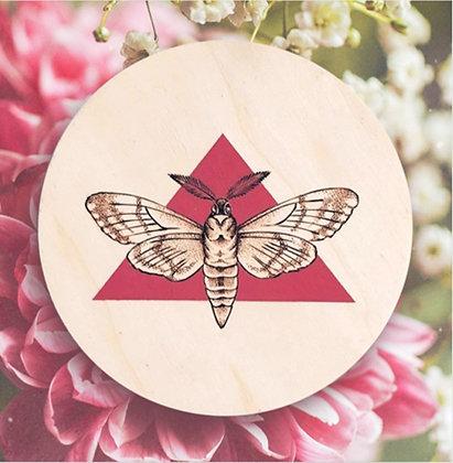 Carte postale Papillon de nuit