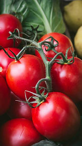 local_british_tomatoes.jpeg