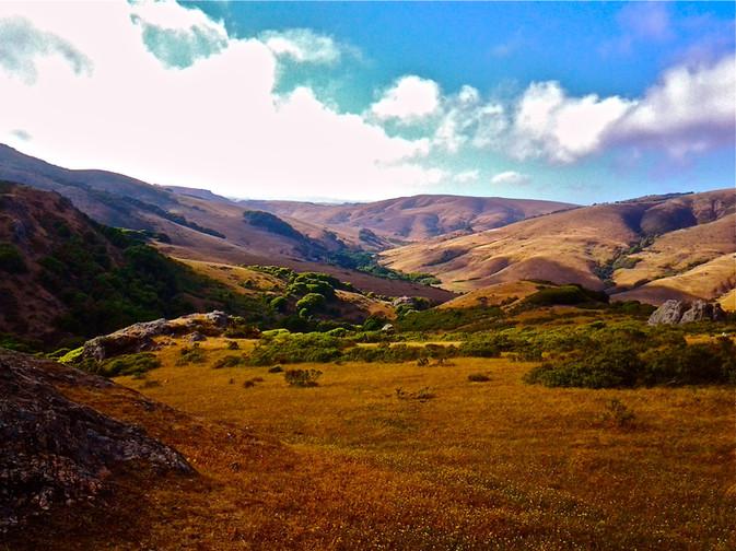 Rolling hills of Walker Creek