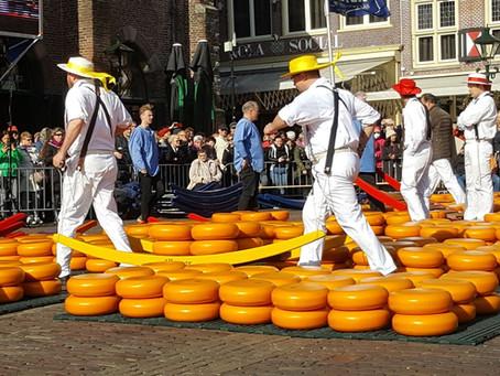 Record Breaking Cheese Tasting in Alkmaar