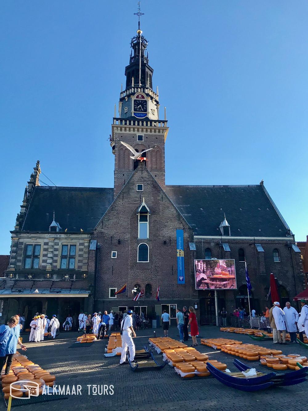 Tuesday Evening Alkmaar Cheese Market