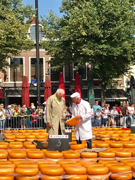 Cheese Inspectors, Alkmaar Cheese Market