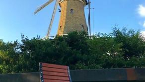 Canadian Sun Loungers in Alkmaar!