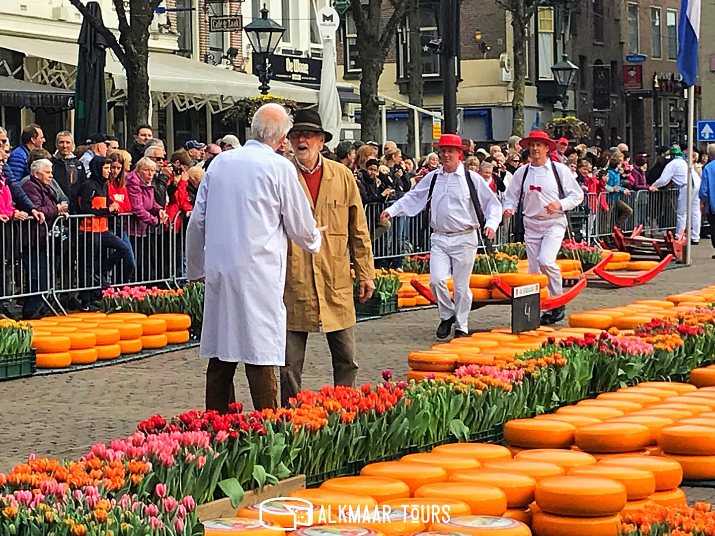 The Flower Alkmaar Cheese Market
