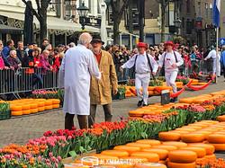 The Tulip Cheese Market