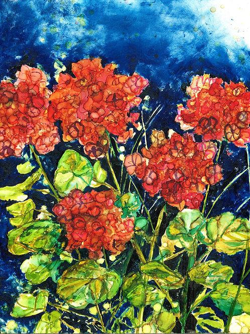 Red Geraniums Print