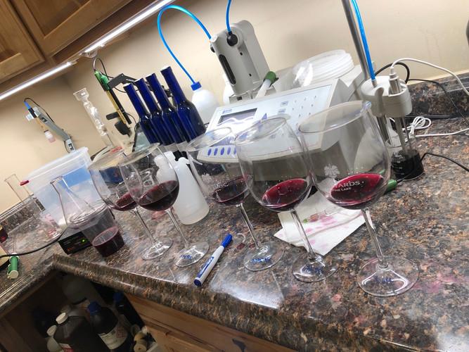 Bench trials of wine
