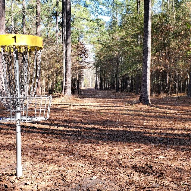 South East Hole 1 Basket