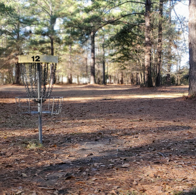 Owens Field Hole 12 Basket