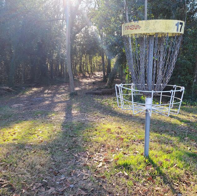Owens Field Hole 17 Long Basket