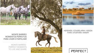 Perfect Moments Brochura