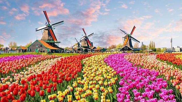roteiro-amsterdam-740x415.jpg