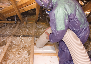 Insulation-Removal.png