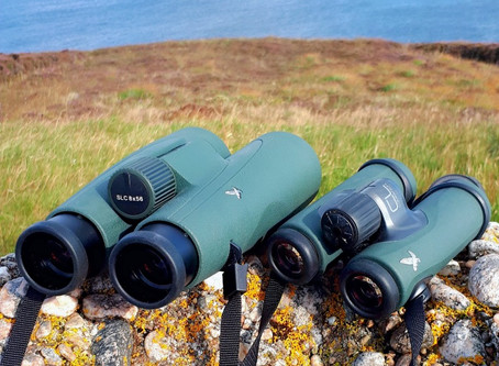 Binocular Review - Swarovski CL Companion 8x30