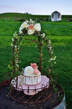Heidi's Cake
