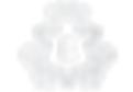 ESV logo transperancy_edited_edited.png