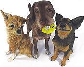 Custom Dog Polymer Clay Sculpture Joan Cabarrus