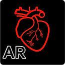 AR_Human_heart_–_A_glimpse.jpg
