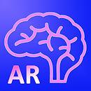 AR Human brain.jpg
