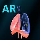 AR Respiratory system physiology.jpg
