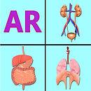 AR Incredible human body.jpg
