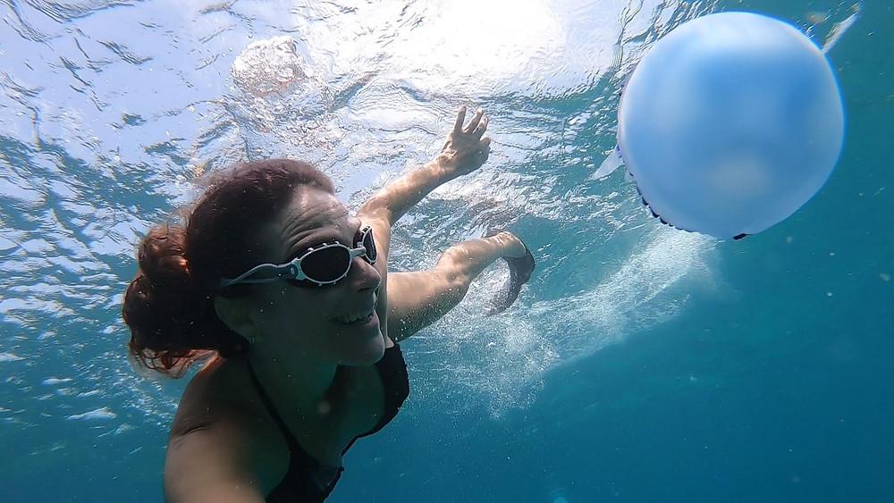 כחולת שוליים חלקה ובת הים