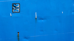 bleu-logo4