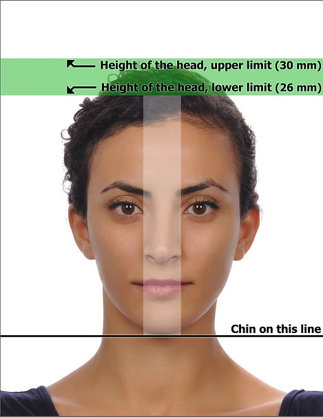 biometrisches passfoto_edited.jpg