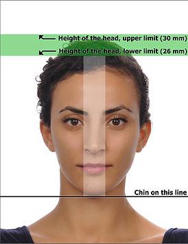 biometrisches passfoto.jpg