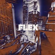 flex cover art.jpg