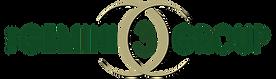 Gemini 3 Group Logo.png