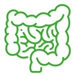 Clinician Intestine Icon.png