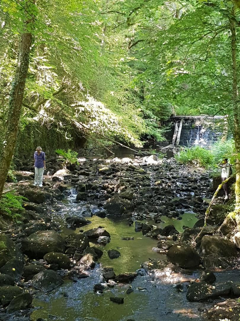 Bandiat walk river 3.jpg
