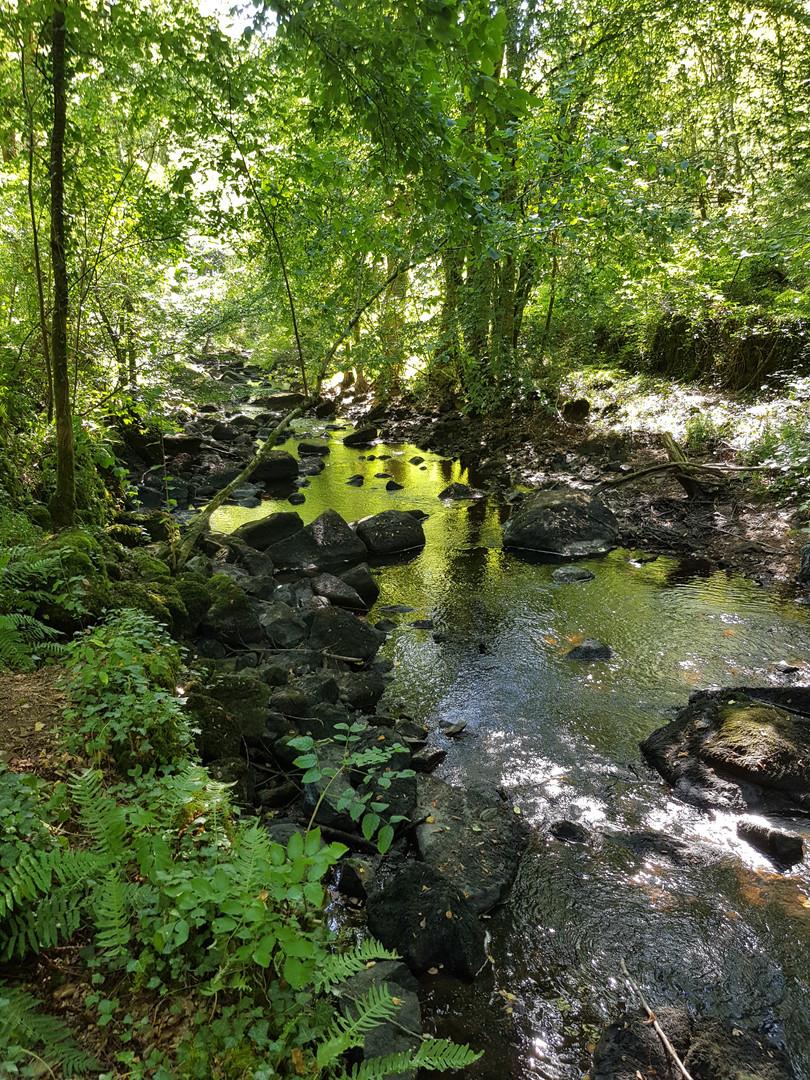 Bandiat walk river 4.jpg