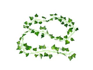 Artificial Decorative Ivy