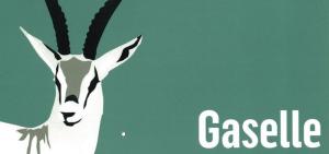 Romerike Grunnboring AS har blitt kåret til Gaselle 2016