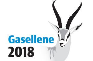 Romerike Grunnboring AS ble kåret til Gaselle i 2018