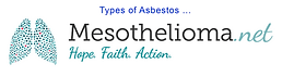 Mesothelioma_Link_Image_002.png