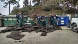 Bay Cleanup