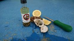 a bottle of oyster elixir