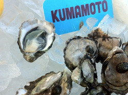 a Kumamoto
