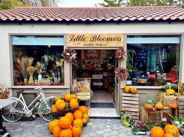 autumn shop front.jpg