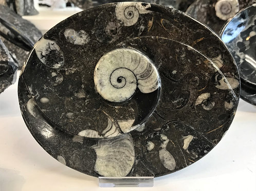 Fossil Ammonite Dish