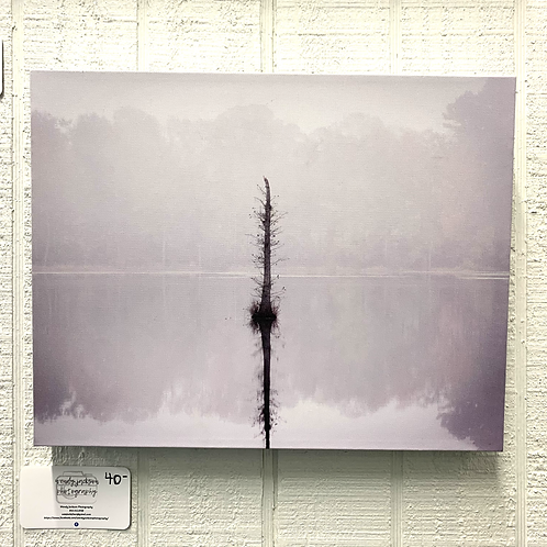Wendy Jackson Photography on Canvas - Tree in the River