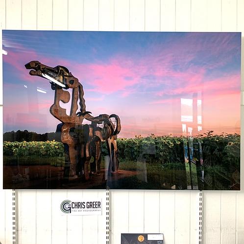 Chris Greer Photography - Iron Horse on Aluminum
