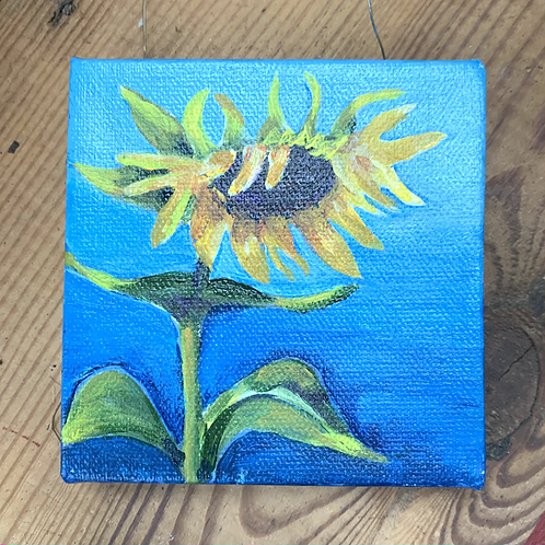 S. Garrett Small Canvas - Sleepy Sunflower